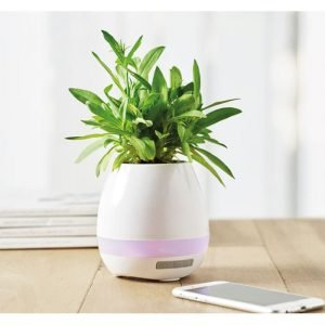 flower pot bluetooth speaker with pink lights and smartphone