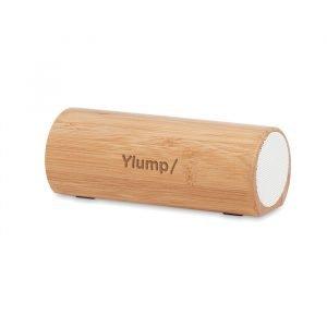 Portable speaker (cylindrical shape)